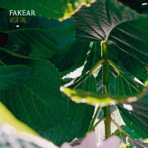 fakear vegetal